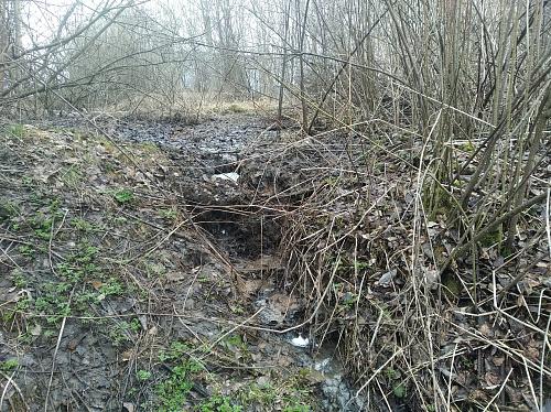 Росприроднадзор выявил источник сброса сточных вод в «молочный» ручей в Вязниках