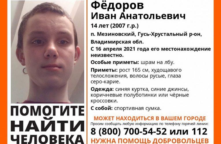 В Гусь-Хрустальном районе пропал 14-летний мальчик